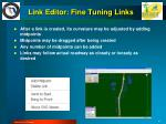 link editor fine tuning links