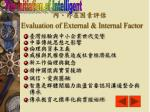 evaluation of external internal factor