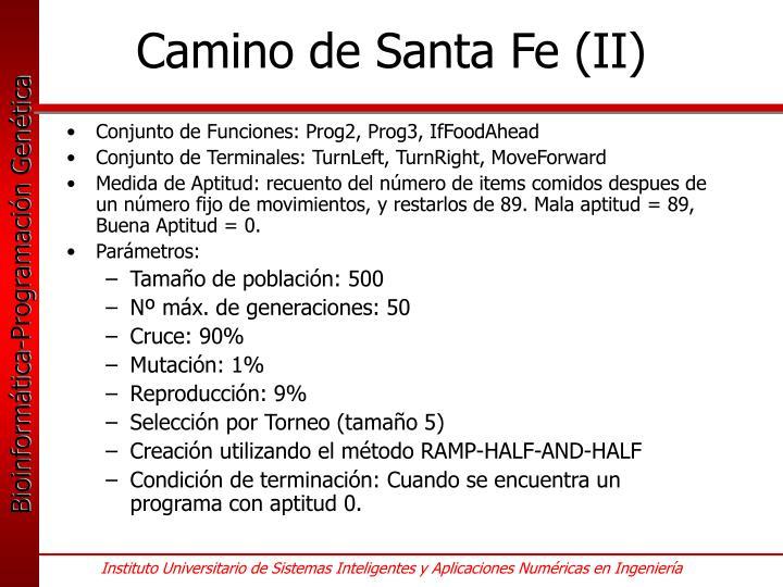 Camino de Santa Fe (II)