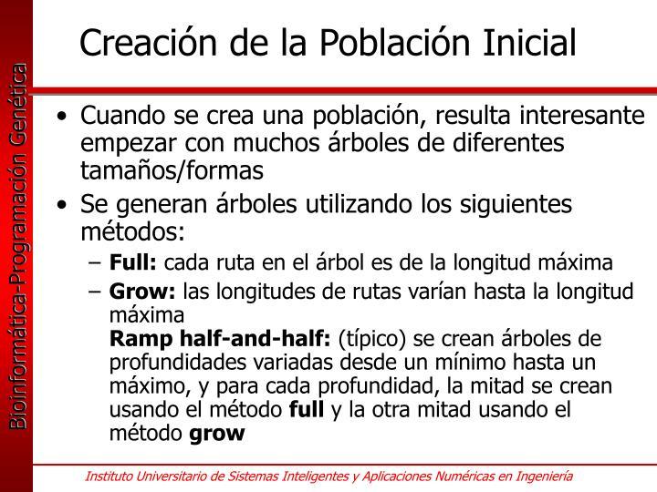 Creación de la Población Inicial