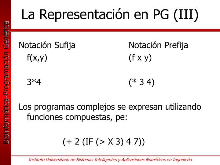 La Representación en PG (III)