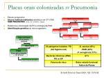placas orais colonizadas vs pneumonia
