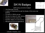 sk1n badges