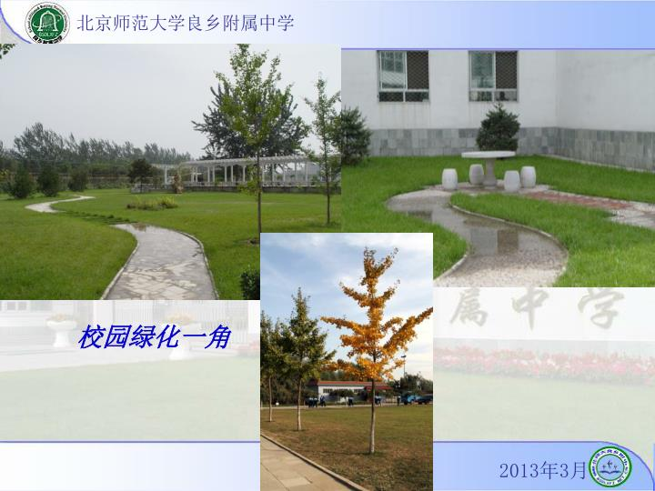 校园绿化一角