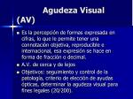agudeza visual av