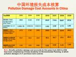 pollution damage cost accounts in china