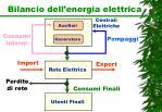 bilancio dell energia elettrica1