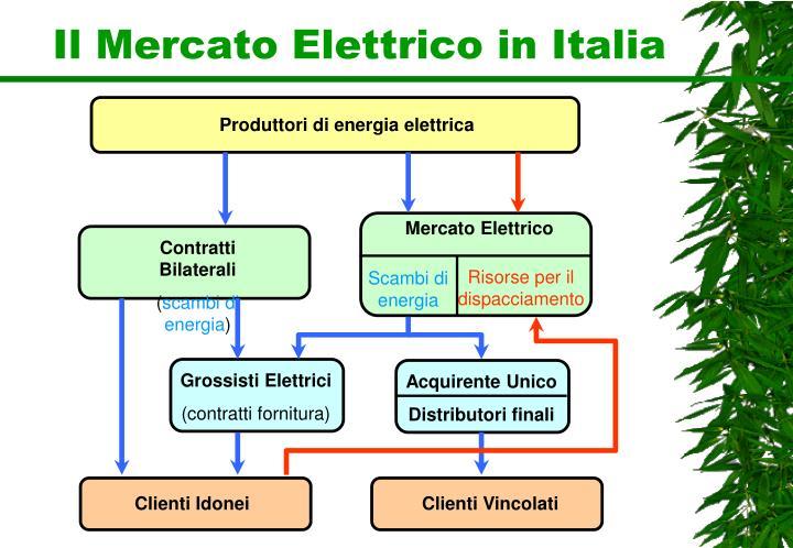 Il Mercato Elettrico in Italia