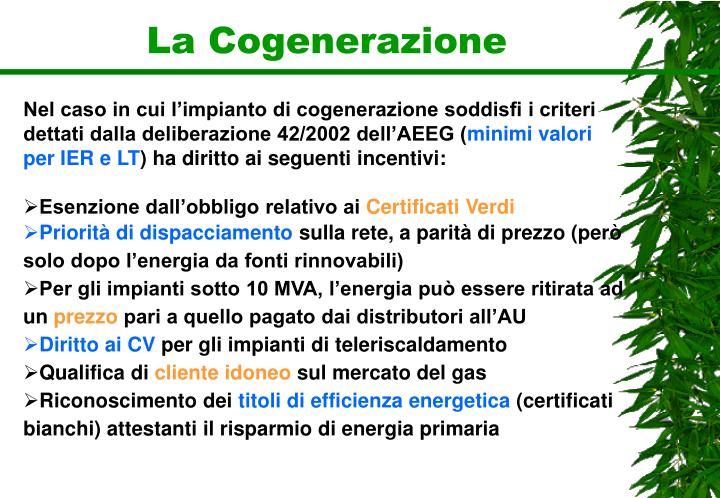 La Cogenerazione