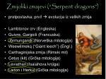 zmijoliki zmajevi serpent dragons