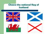 choose the national flag of scotland