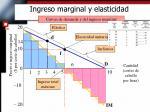 ingreso marginal y elasticidad1