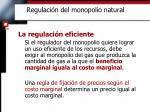 regulaci n del monopolio natural2