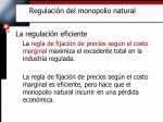 regulaci n del monopolio natural3