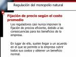 regulaci n del monopolio natural5