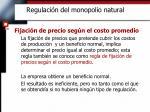 regulaci n del monopolio natural6
