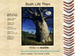 bush life then