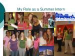 my role as a summer intern