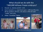 what should we do with the 500 000 leftover frozen embryos