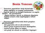 besin yoncas