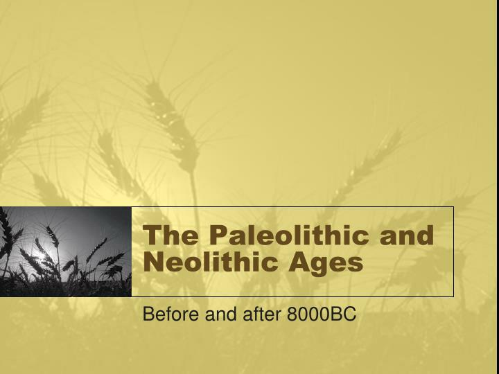 the paleolithic and neolithic ages n.