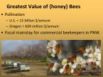 greatest value of honey bees