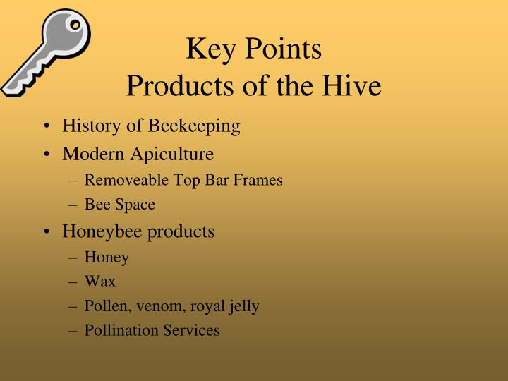 Key points products of the hive
