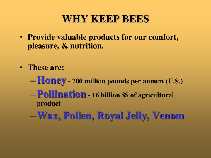 WHY KEEP BEES