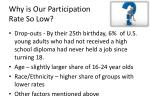 why is our participation rate so low