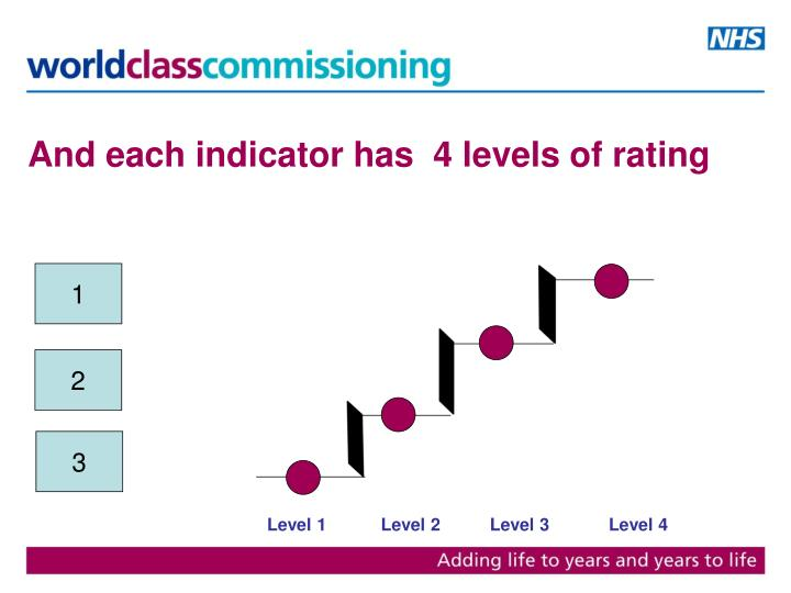 And each indicator has  4 levels of rating