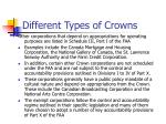 different types of crowns1
