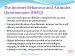 the internet behaviour and attitudes questionnaire ibaq