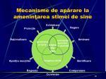 mecanisme de ap rare la amenin area stimei de sine