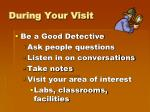 during your visit