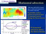 horizontal advection