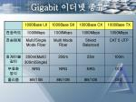 gigabit6
