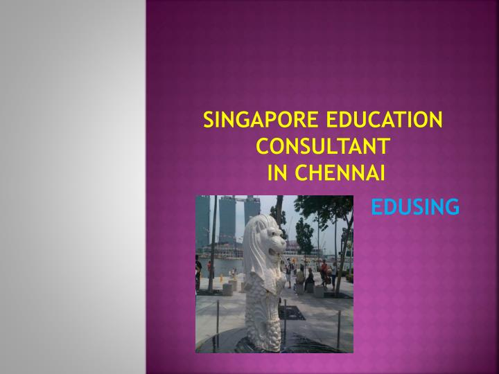 singapore education consultant in chennai n.