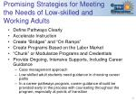 promising strategies for meeting the needs of low skilled and working adults