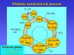 p klady k atalytick ch proces4