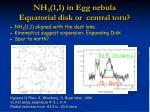 nh 3 1 1 in egg nebula equatorial disk or central toru