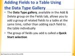 adding fields to a table using the data type gallery