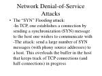 network denial of service attacks1