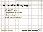 alternative roughages