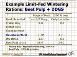 example limit fed wintering rations beet pulp ddgs