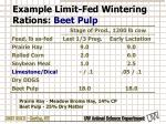 example limit fed wintering rations beet pulp