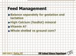 feed management1