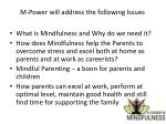 m power will address the following issues