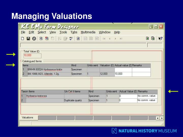 Managing Valuations