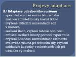 projevy adaptace