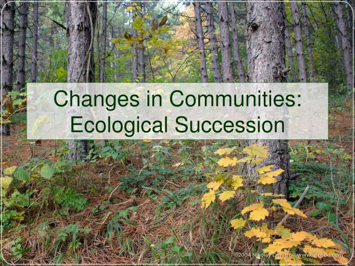 Changes in communities ecological succession